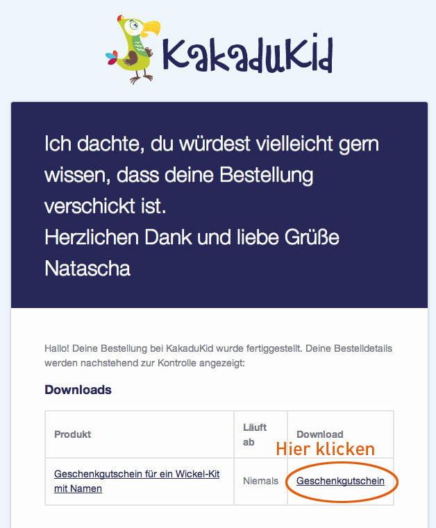 Anleitung Download